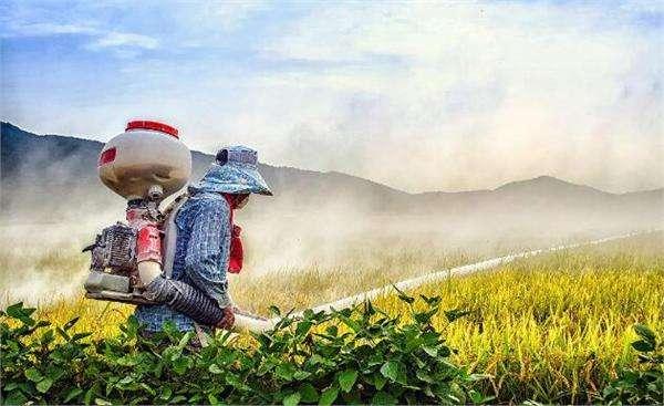 2019年中国农药行业销售百强企业榜单