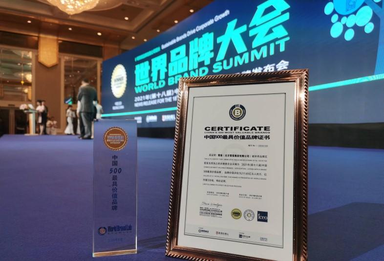 2021年中国500最具价值品牌排行榜:国家电网蝉联榜首